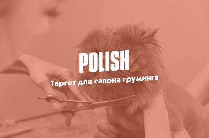 Кейс: «Polish»